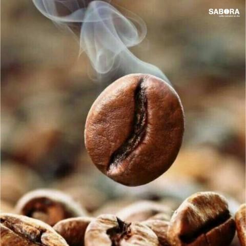 Grano de café tostado