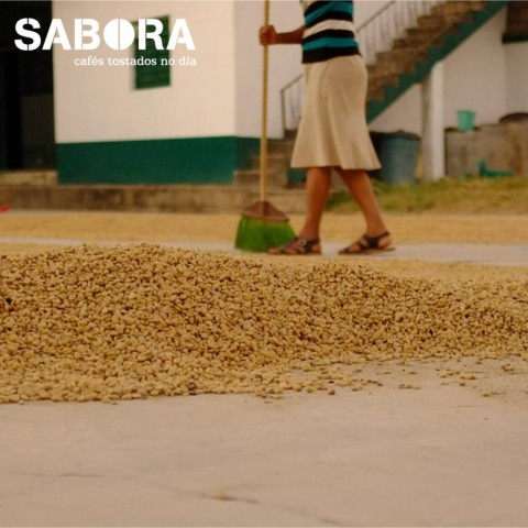 Secado de café en patio